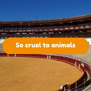 Why are the Spanish so cruel to animals