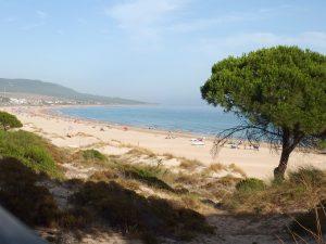 Runner-up Bolonia beach in Cadiz