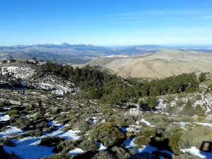 Winner of best mountain view